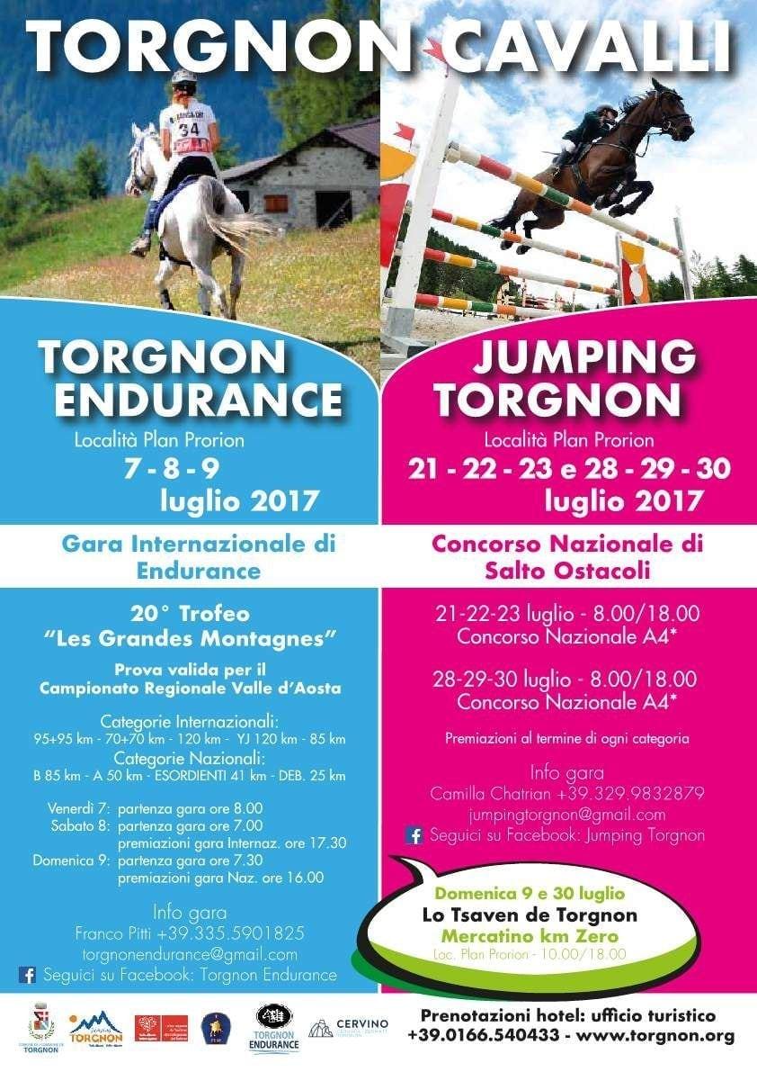 Torgnon Horses 2017
